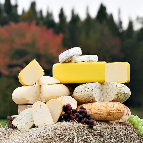 nos-producteurs-fromagerie-ptit-plaisir1